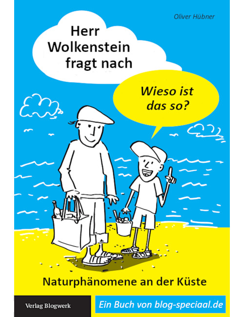 Cover Herr Wolkenstein E-Book